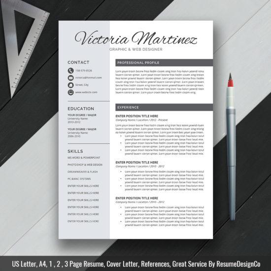 Professional Resume Template Ms Word Modern Cv Template Design